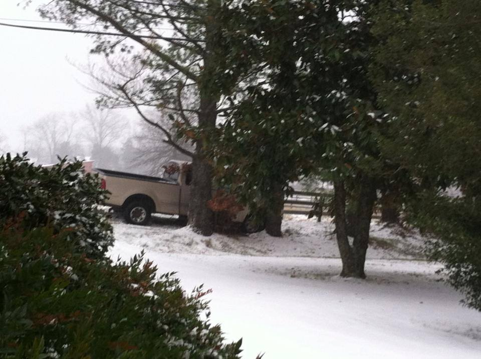 Car slipped and hit two trees